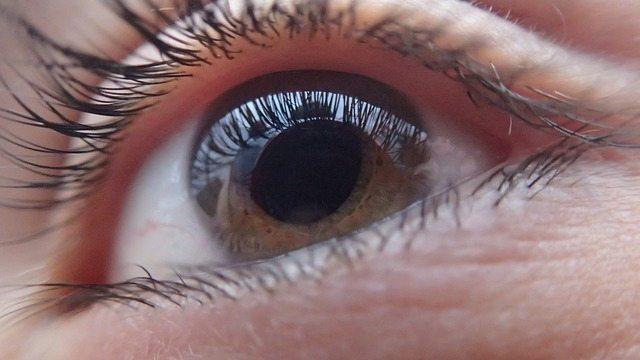 handicape lie a lacuite visuelle