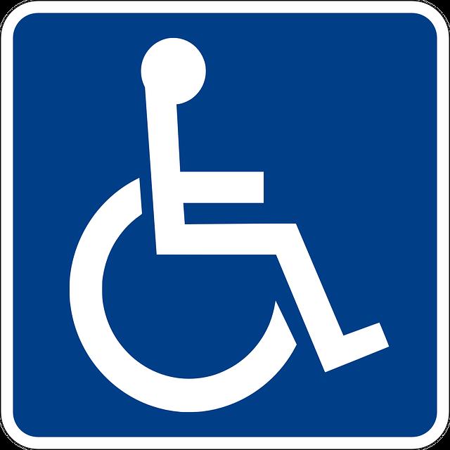 Journee mondiale des mobilites et de l accessibilite 2015